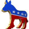 Democrats  had a big night in mid-term elections